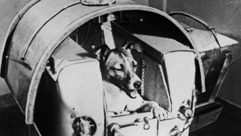 The Sad Story of Laika, the First Dog Launched Into Orbit