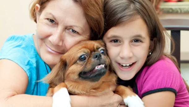 How can dogs help you cope with depression, anxiety, and stress?